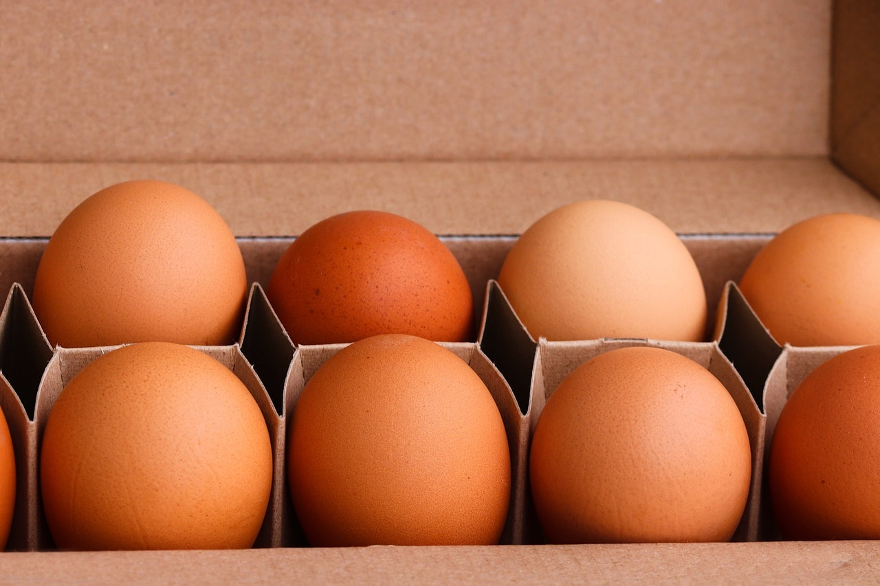 How to Store Eggs