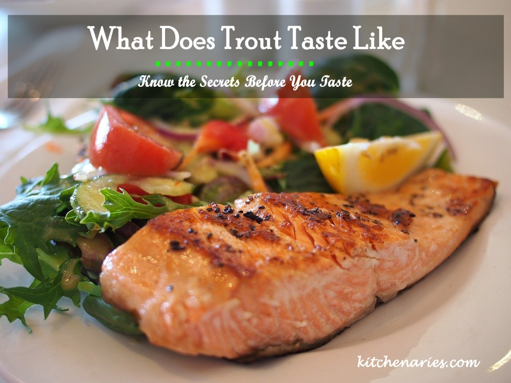 What Does Trout Taste Like - Know the Secrets Before You Taste