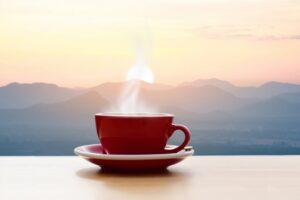 best thermal coffee maker reviews