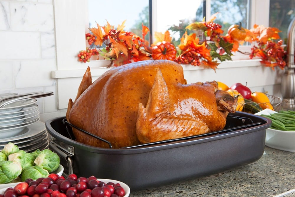 best turkey roaster oven reviews