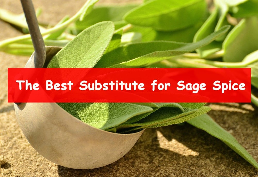 the best substitute for sage spice